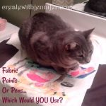 fabric paints or pens